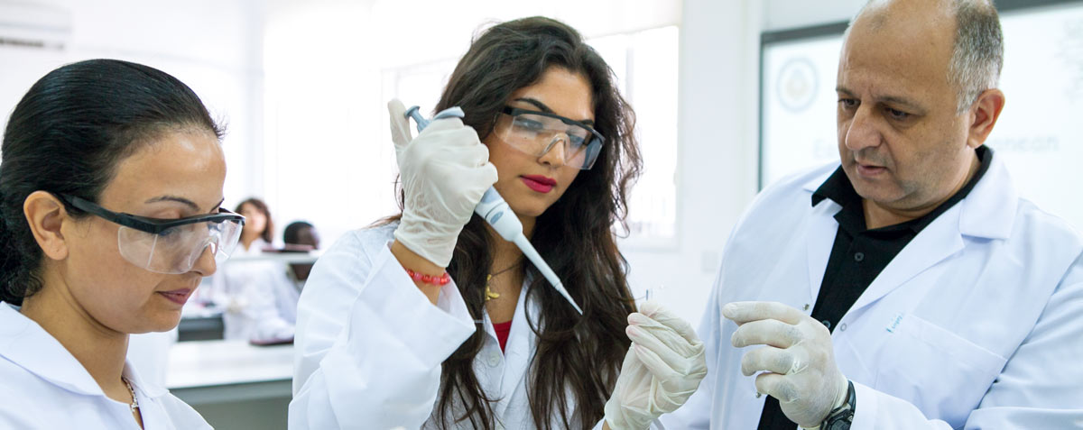 thesis in chemistry Master of science in chemistry (msc both degrees require graduate courses and research work reported in a thesis courses offered in the chemistry department.