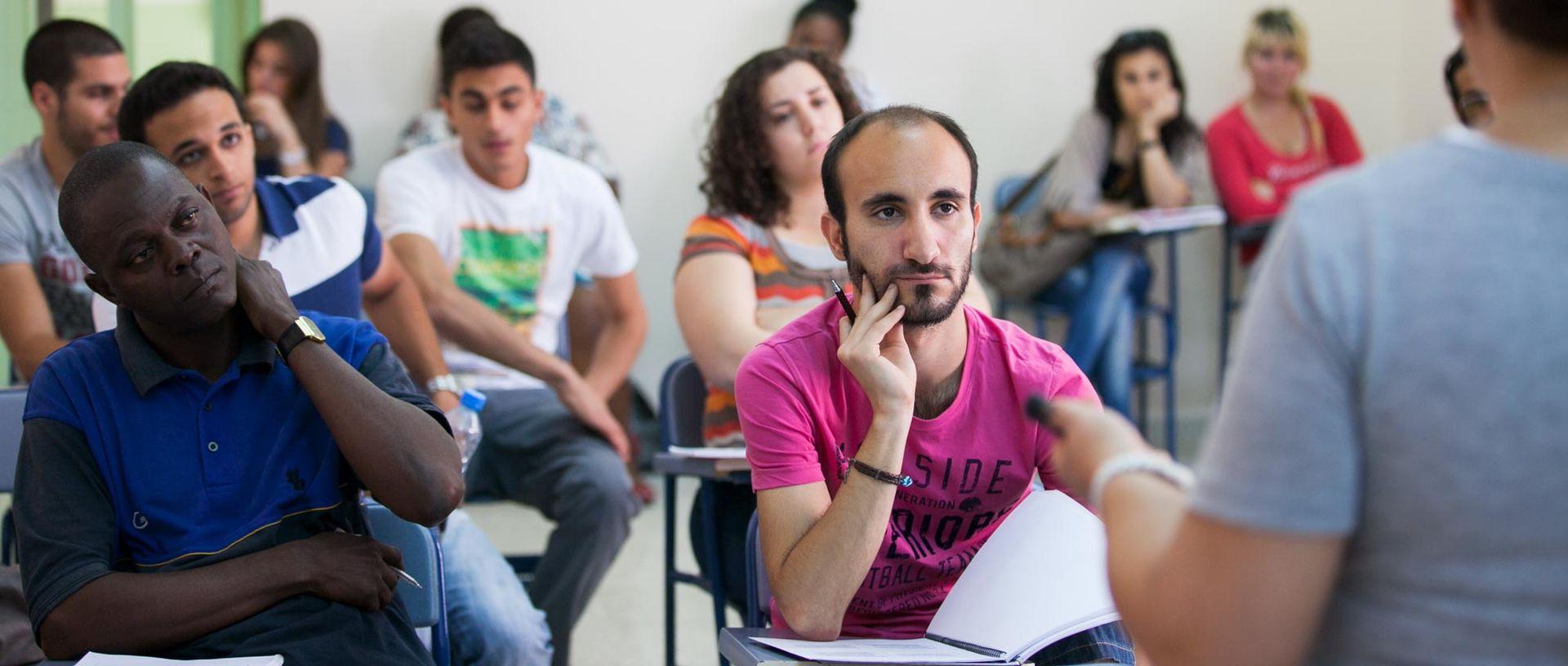 Application essay harvard university