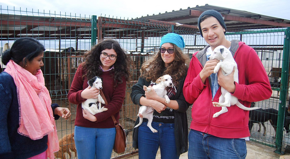 Students of EMU Tourism Faculty Support Dogs in Shelters