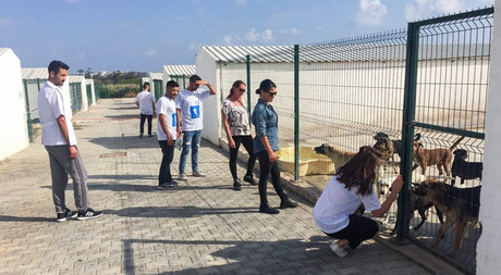 EMU Faculty of Communication Students Pay Separate Visits to Famagusta Municipality Dog Shelter and Rehabilitation Centre